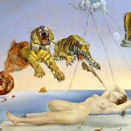 Salvador Dali - Rêve causé par le vol d'une abeille